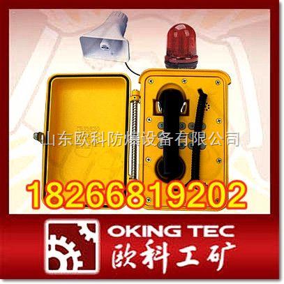 各种型号工业抗噪电话 防爆电话机 通讯电缆接线盒