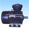 YB2—80~315系列隔爆型三相异步电动机YB2—80~315系列隔爆型三相异步电动机